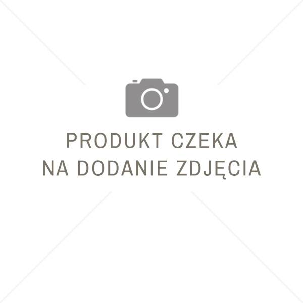 Acrylic pitted plaster GREINPLAST TAK